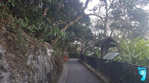 Victoria Peak Hong Kong Lugard Road