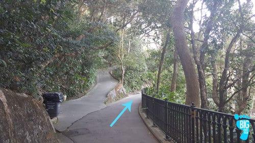 Victoria Peak Hong Kong Lugard Road 3