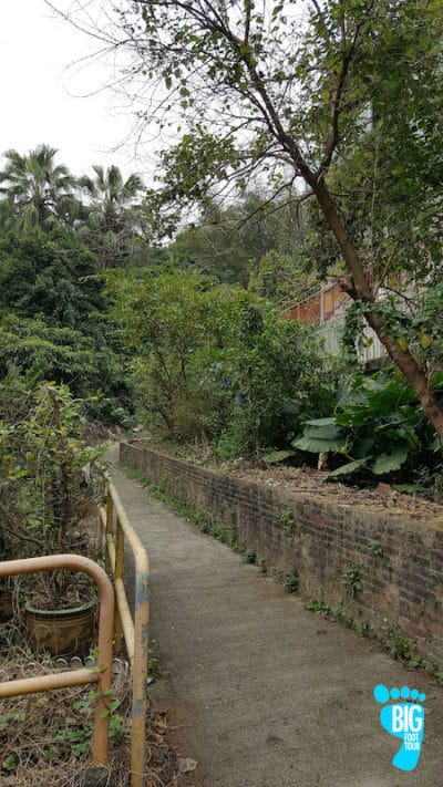 Ten Thousand Buddhas Monastery - Hong Kong Walking Tour Guide Step 20